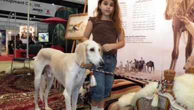 ADIHEX — Конно-охотничья выставка Абу Даби