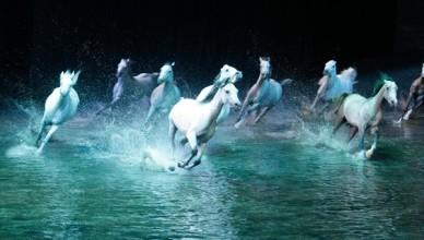 QASR AL HOSN FESTIVAL AND CAVALIA — Каср Аль Хосн фестиваль и шоу Кавалья